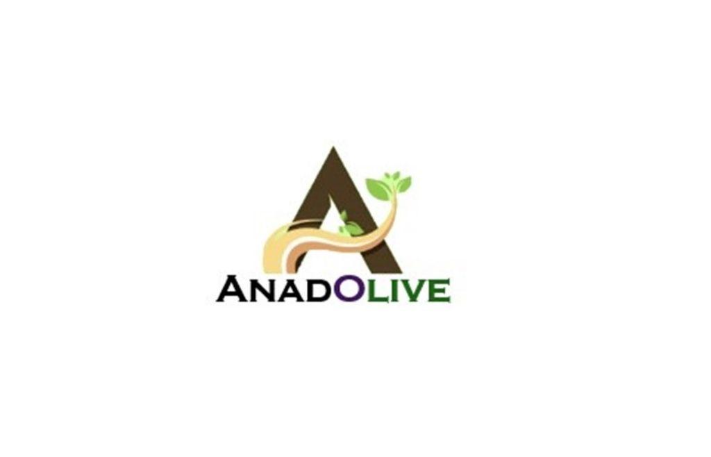 anadolive